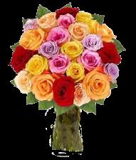 roses 5b