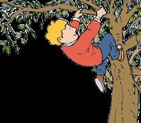 midnight-tree.